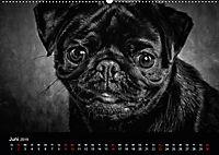 Dogs - Black & White (Wandkalender 2019 DIN A2 quer) - Produktdetailbild 6