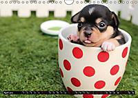 Dogs Dogs Dogs (Wall Calendar 2019 DIN A4 Landscape) - Produktdetailbild 4
