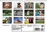 Dogs Dogs Dogs (Wall Calendar 2019 DIN A4 Landscape) - Produktdetailbild 13