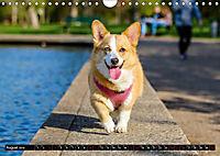 Dogs Dogs Dogs (Wall Calendar 2019 DIN A4 Landscape) - Produktdetailbild 8