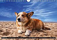 Dogs Dogs Dogs (Wall Calendar 2019 DIN A4 Landscape) - Produktdetailbild 10