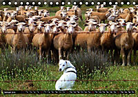 DOG'S DREAM - wovon Hunde träumen (Tischkalender 2019 DIN A5 quer) - Produktdetailbild 1