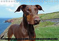 DOG'S DREAM - wovon Hunde träumen (Tischkalender 2019 DIN A5 quer) - Produktdetailbild 5