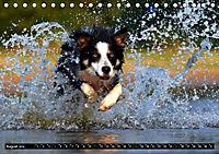 DOG'S DREAM - wovon Hunde träumen (Tischkalender 2019 DIN A5 quer) - Produktdetailbild 8