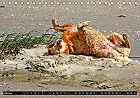 DOG'S DREAM - wovon Hunde träumen (Tischkalender 2019 DIN A5 quer) - Produktdetailbild 7