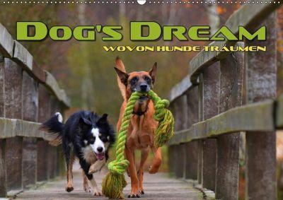 DOG'S DREAM - wovon Hunde träumen (Wandkalender 2019 DIN A2 quer), Renate Bleicher