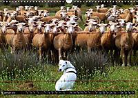 DOG'S DREAM - wovon Hunde träumen (Wandkalender 2019 DIN A3 quer) - Produktdetailbild 1