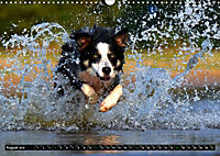 DOG'S DREAM - wovon Hunde träumen (Wandkalender 2019 DIN A3 quer) - Produktdetailbild 8
