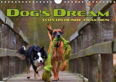 DOG'S DREAM - wovon Hunde träumen (Wandkalender 2019 DIN A4 quer), Renate Bleicher