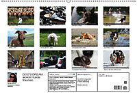 DOG'S DREAM - wovon Hunde träumen (Wandkalender 2019 DIN A2 quer) - Produktdetailbild 13