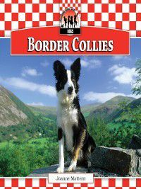 Dogs Set 9: Border Collies, Joanne Mattern