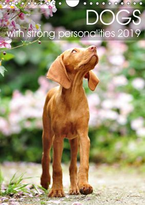 Dogs with strong personalities 2019 (Wall Calendar 2019 DIN A4 Portrait), dogARTig