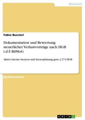 Dokumentation und Bewertung steuerlicher Verlustvorträge nach HGB i.d.F. BilMoG, Fabio Buccieri