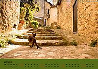 Dorfidyllen in Frankreich (Wandkalender 2019 DIN A3 quer) - Produktdetailbild 7