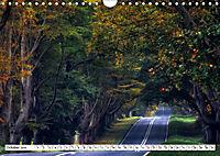Dorset (Wall Calendar 2019 DIN A4 Landscape) - Produktdetailbild 10