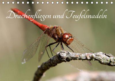 Drachenfliegen und Teufelsnadeln (Tischkalender 2019 DIN A5 quer), Thomas Freiberg