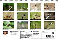 Drachenfliegen und Teufelsnadeln (Wandkalender 2019 DIN A3 quer) - Produktdetailbild 13