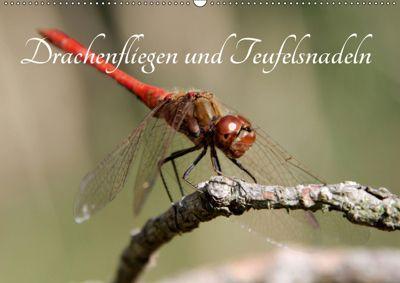Drachenfliegen und Teufelsnadeln (Wandkalender 2019 DIN A2 quer), Thomas Freiberg