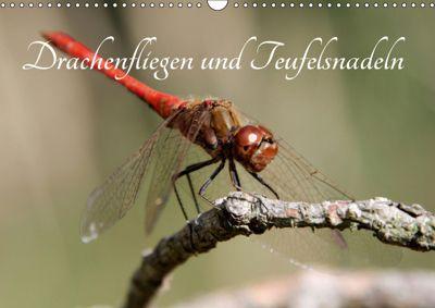 Drachenfliegen und Teufelsnadeln (Wandkalender 2019 DIN A3 quer), Thomas Freiberg