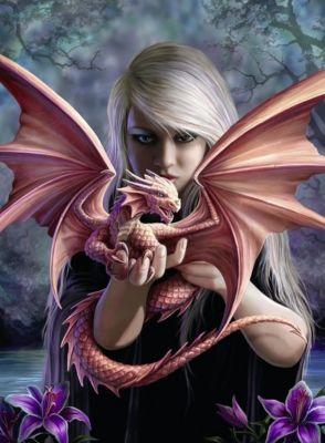 Drachenmädchen (Puzzle), Anne Stokes