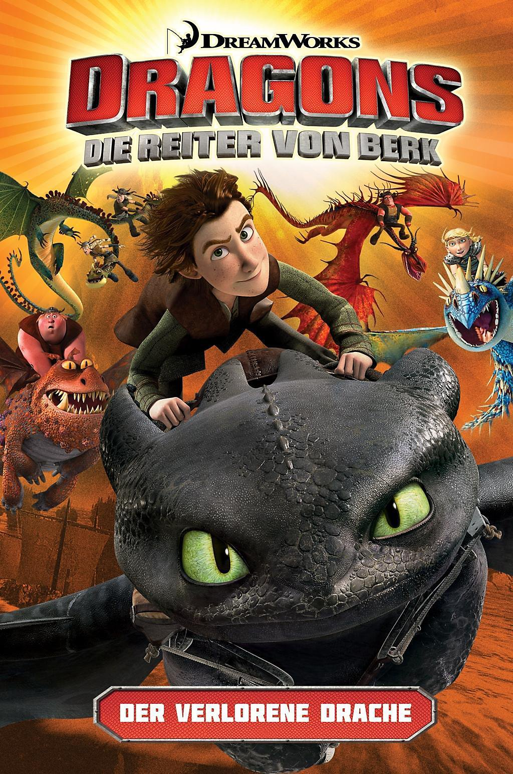 Dragons - die Reiter von Berk: Der verlorene Drache Buch