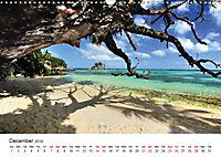 Dreamy Beaches of the Seychelles (Wall Calendar 2019 DIN A3 Landscape) - Produktdetailbild 12