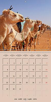 Dromedary and Camel - Giants of the Desert (Wall Calendar 2019 300 × 300 mm Square) - Produktdetailbild 7