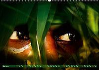 Dschungelaugen im Regenwald (Wandkalender 2019 DIN A2 quer) - Produktdetailbild 5