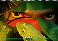Dschungelaugen im Regenwald (Wandkalender 2019 DIN A2 quer) - Produktdetailbild 4