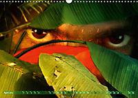 Dschungelaugen im Regenwald (Wandkalender 2019 DIN A3 quer) - Produktdetailbild 4