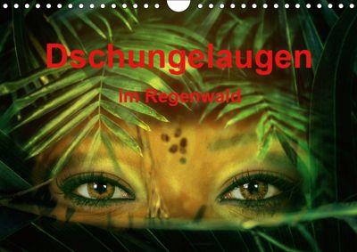 Dschungelaugen im Regenwald (Wandkalender 2019 DIN A4 quer), Liselotte Brunner-Klaus