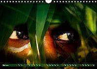 Dschungelaugen im Regenwald (Wandkalender 2019 DIN A4 quer) - Produktdetailbild 5