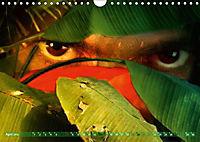 Dschungelaugen im Regenwald (Wandkalender 2019 DIN A4 quer) - Produktdetailbild 4