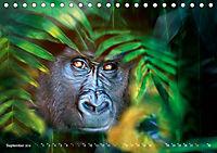 Dschungelleben - Tierportraits (Tischkalender 2019 DIN A5 quer) - Produktdetailbild 9