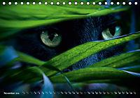 Dschungelleben - Tierportraits (Tischkalender 2019 DIN A5 quer) - Produktdetailbild 11