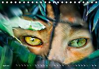 Dschungelleben - Tierportraits (Tischkalender 2019 DIN A5 quer) - Produktdetailbild 4