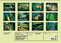 Dschungelleben - Tierportraits (Wandkalender 2019 DIN A2 quer) - Produktdetailbild 13
