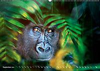 Dschungelleben - Tierportraits (Wandkalender 2019 DIN A2 quer) - Produktdetailbild 9