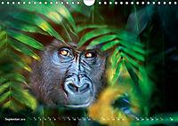 Dschungelleben - Tierportraits (Wandkalender 2019 DIN A4 quer) - Produktdetailbild 9