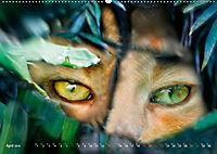 Dschungelleben - Tierportraits (Wandkalender 2019 DIN A2 quer) - Produktdetailbild 4