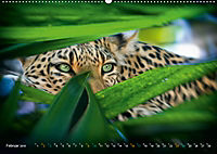Dschungelleben - Tierportraits (Wandkalender 2019 DIN A2 quer) - Produktdetailbild 2