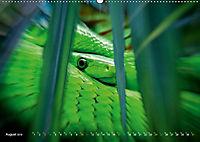 Dschungelleben - Tierportraits (Wandkalender 2019 DIN A2 quer) - Produktdetailbild 8