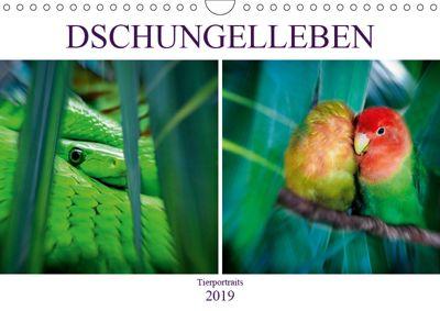 Dschungelleben - Tierportraits (Wandkalender 2019 DIN A4 quer), Liselotte Brunner-Klaus