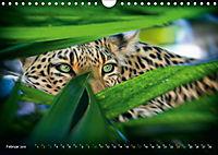 Dschungelleben - Tierportraits (Wandkalender 2019 DIN A4 quer) - Produktdetailbild 2