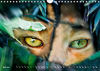 Dschungelleben - Tierportraits (Wandkalender 2019 DIN A4 quer) - Produktdetailbild 4