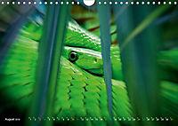 Dschungelleben - Tierportraits (Wandkalender 2019 DIN A4 quer) - Produktdetailbild 8
