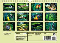 Dschungelleben - Tierportraits (Wandkalender 2019 DIN A4 quer) - Produktdetailbild 13