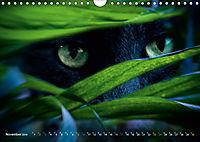 Dschungelleben - Tierportraits (Wandkalender 2019 DIN A4 quer) - Produktdetailbild 11
