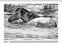 Dülmener Wildpferde im Münsterland in schwarz und weiß (Wandkalender 2019 DIN A3 quer) - Produktdetailbild 2