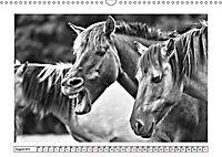 Dülmener Wildpferde im Münsterland in schwarz und weiß (Wandkalender 2019 DIN A3 quer) - Produktdetailbild 3